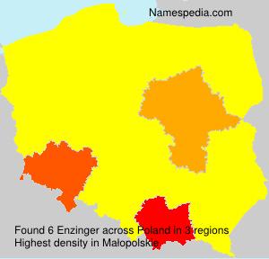 Enzinger