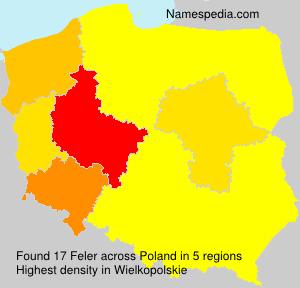 Feler