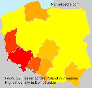 Fleszer