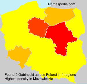Gabinecki