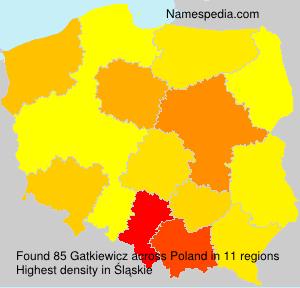 Gatkiewicz
