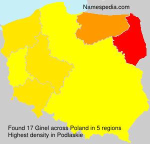 Ginel