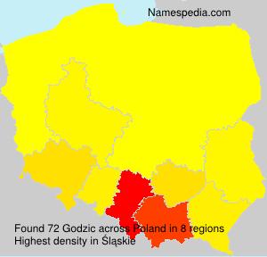 Godzic - Names Encyclopedia