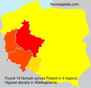 Golusik