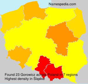 Gorowicz