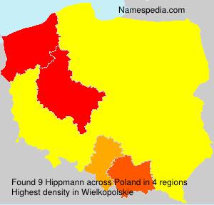 Hippmann