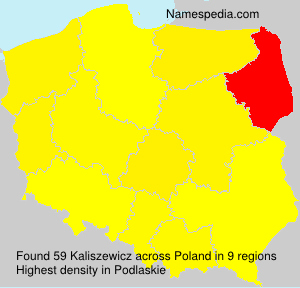 Kaliszewicz