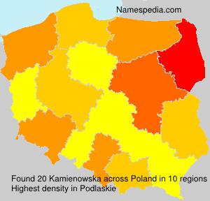 Kamienowska