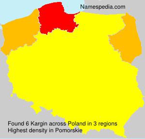 Kargin
