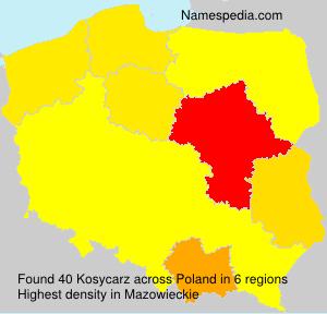 Kosycarz