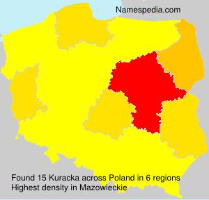 Kuracka