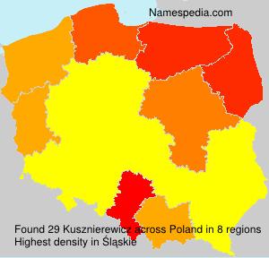 Kusznierewicz