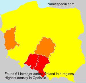Lintmajer