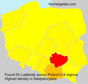 Ludwinek