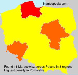 Maracewicz