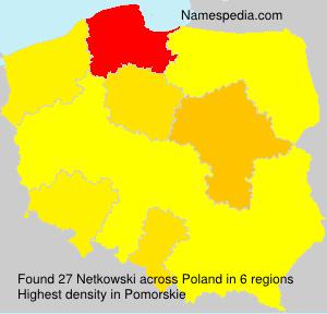 Netkowski