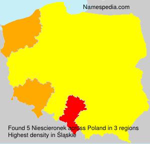 Niescieronek