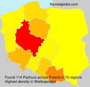 Pachura