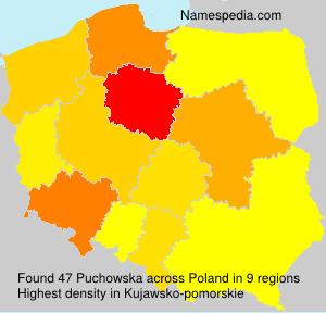 Puchowska
