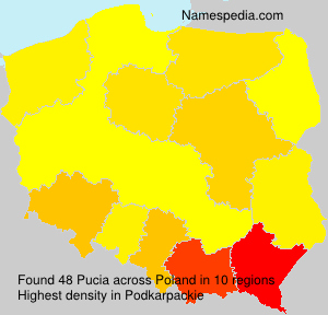 Surname Pucia in Poland
