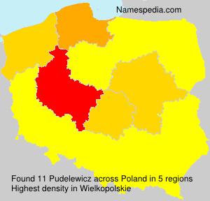 Pudelewicz