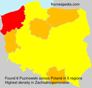 Puzinowski