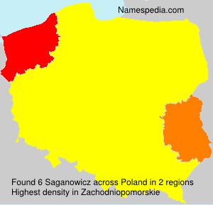 Saganowicz