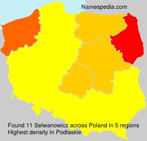 Selwanowicz