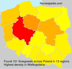 Sniegowski