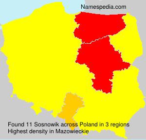 Sosnowik