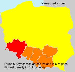 Szyncowicz