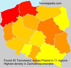 Tamulewicz