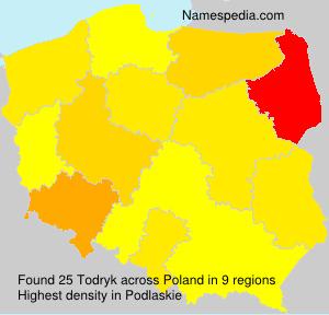 Todryk
