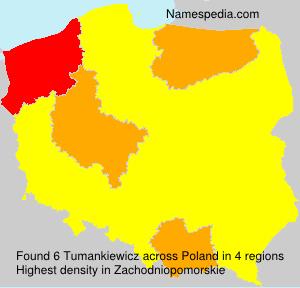 Tumankiewicz