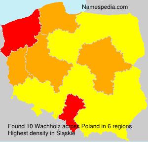 Wachholz