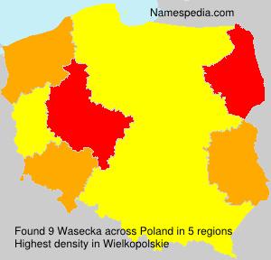 Wasecka