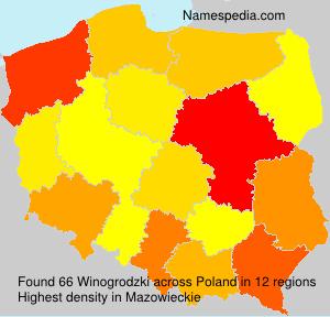 Winogrodzki