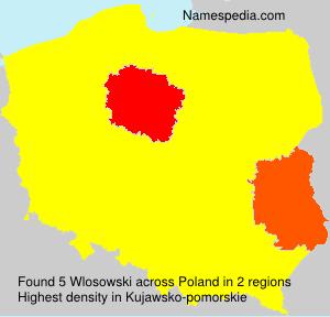 Wlosowski