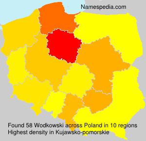 Wodkowski