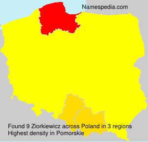 Ziorkiewicz