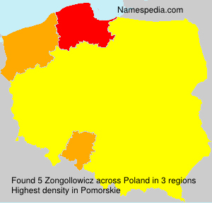 Zongollowicz