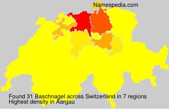 Baschnagel