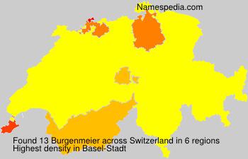 Burgenmeier