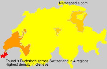 Fuchsloch