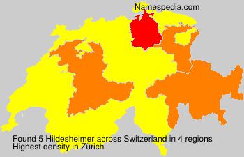 Hildesheimer