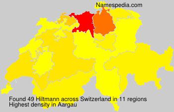 Hiltmann