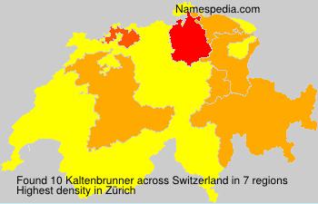 Kaltenbrunner