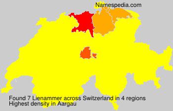 Lienammer