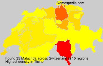 Malacrida