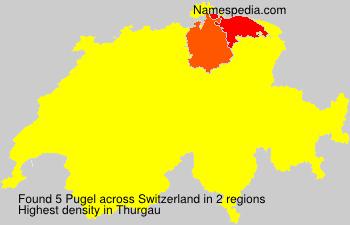 Pugel